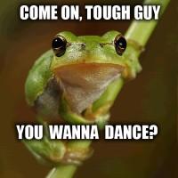 210094701-funny-frog-tough-guy
