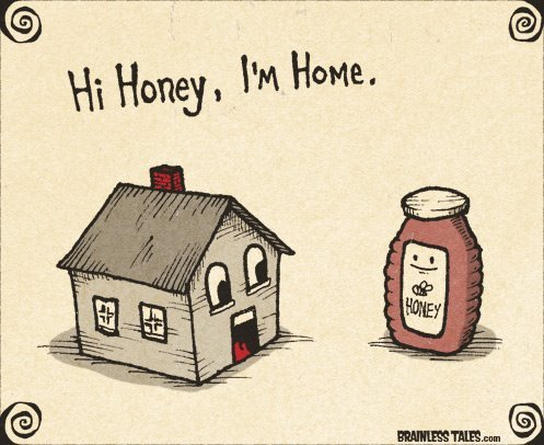 hi-honey-i-am-home-funny-image