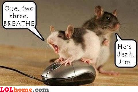 it-s-too-late-for-mouse