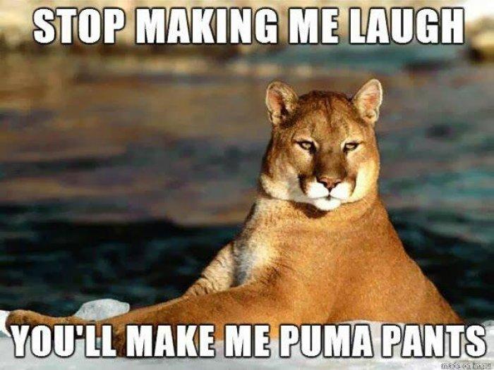 stop-making-me-laugh-meme